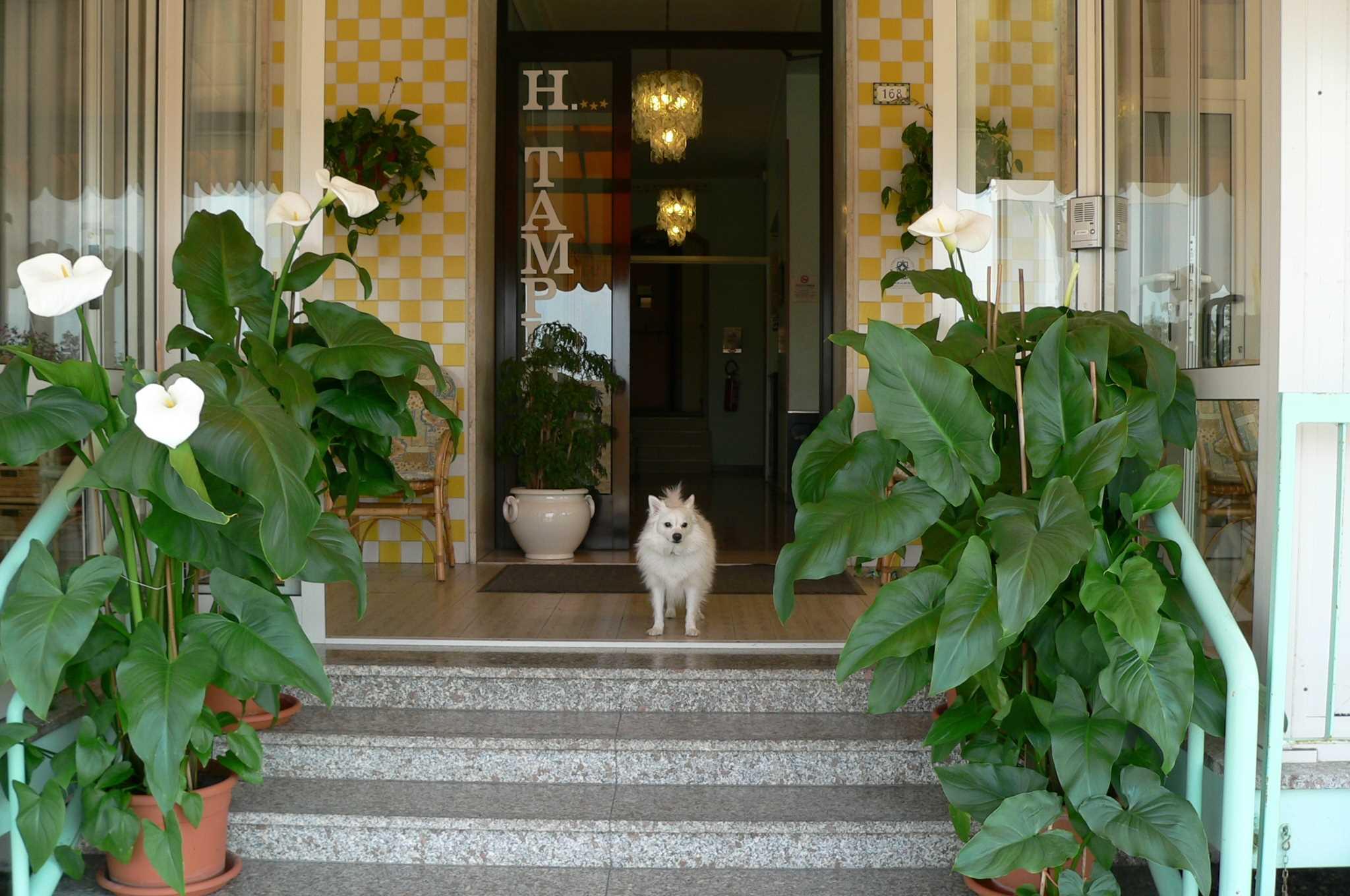 http://www.hoteltampico.it/wp-content/uploads/2016/05/P1030663_1.jpg